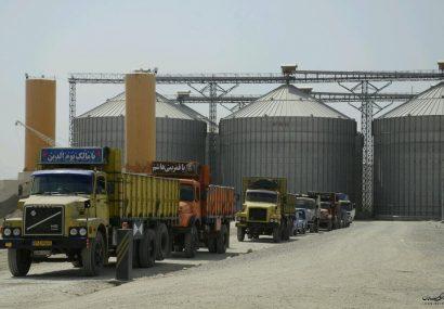 فعالیت مراکز خرید تضمینی گندم در استان گلستان آغاز شد.
